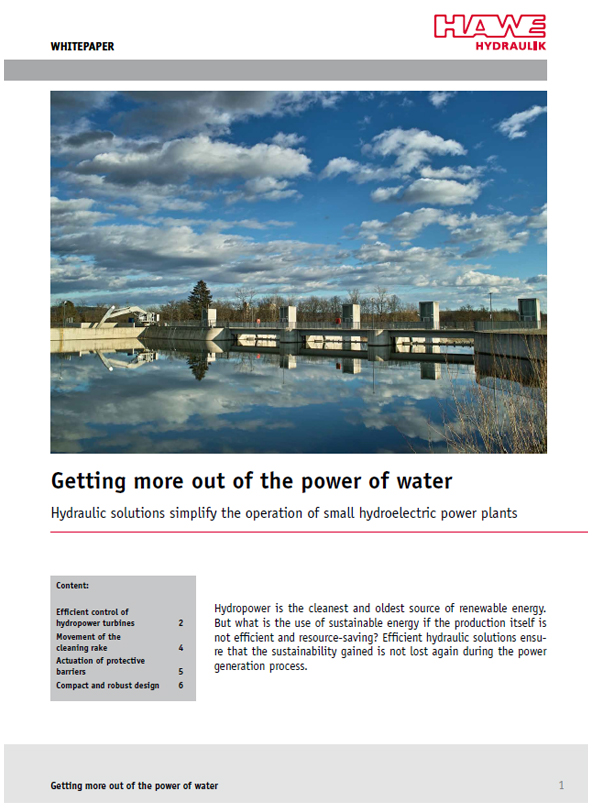 Whitepaper Hydropower